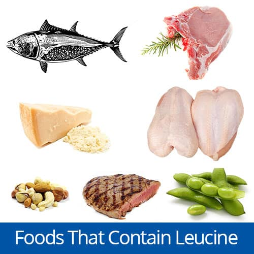 Foods with the amino acid Leucine, Clancy Medical Group, Vista, CA