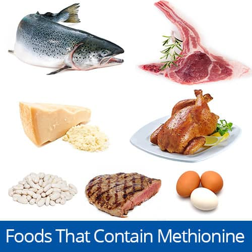 Foods with the amino acid Methionine, Clancy Medical Group, Vista, CA