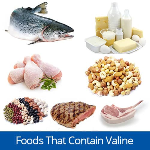 Foods with the amino acid Valine, Clancy Medical Group, Vista, CA